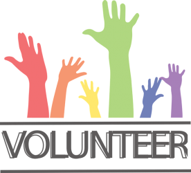 volunteer at wellies-on