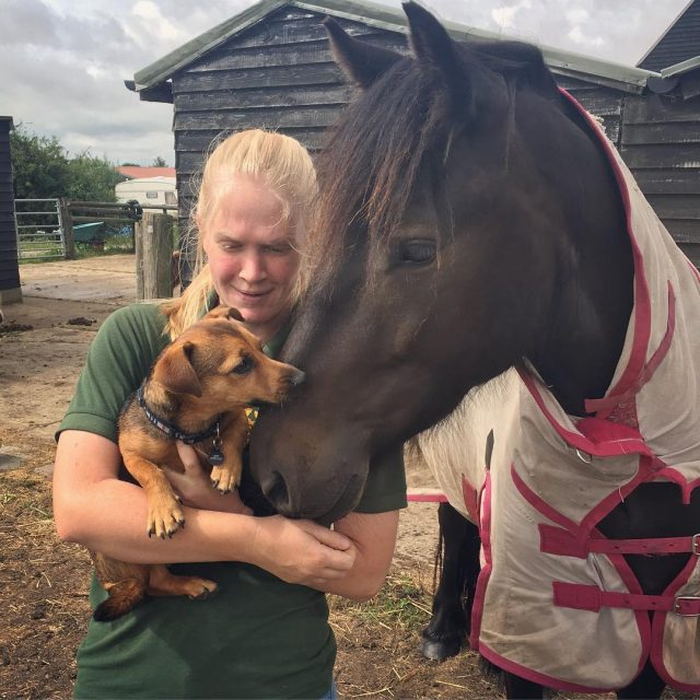 Angus and Joey welliesoncic carefarming carefarm puppy dog pony horsehellip